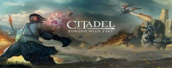 Citadel Forged with Fire crack